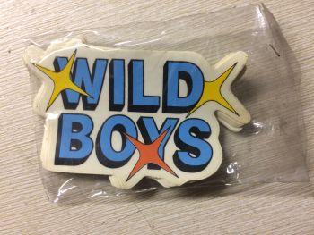 """WILD BOYS"" ADESIVO AUTO VINTAGE ANNI 80 - CIRCA 10 cm"